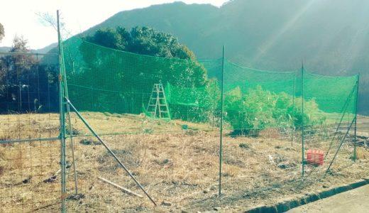 完全無敗!DIYでできる格安で完璧な獣害対策・畑の柵作りの方法【シカ・イノシシ編】その1