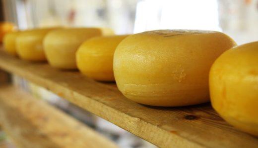 パルメザンチーズを買うよりパルミジャーノレッジャーを買う方が安いという事実