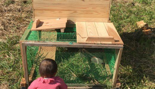移動式、除草機能付きの簡単鶏小屋!チキントラクターを自作したよ!!